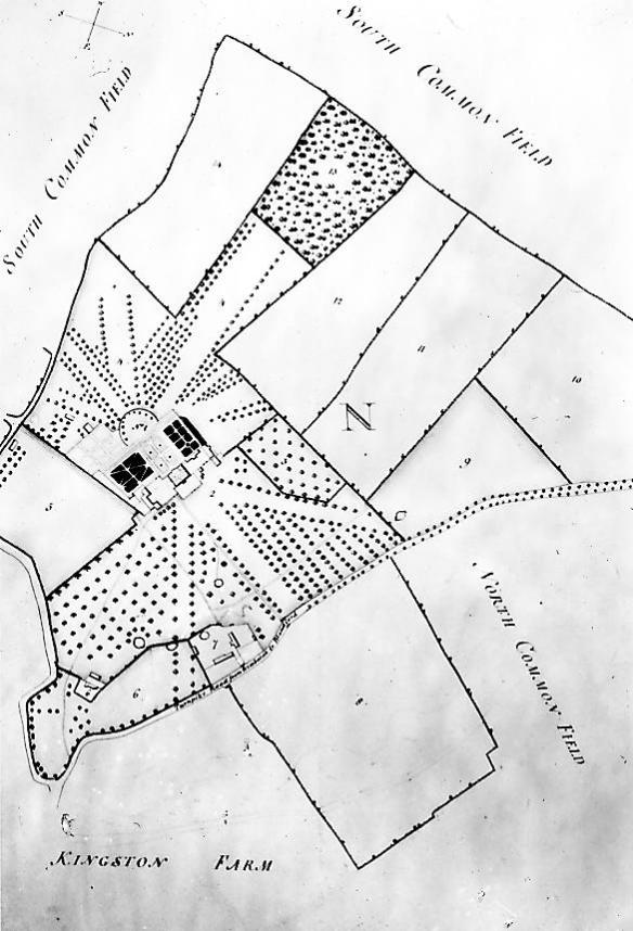 William Woodward's 1774 map showing a very different design. On this map north is bottom right. Note the 'crow's foot' design of vistas flanked by trees leading to the old line of the Wimborne, Blandford road. This survives as an earthwork but the road is now further north because the Bankes had it moved to extend their park.