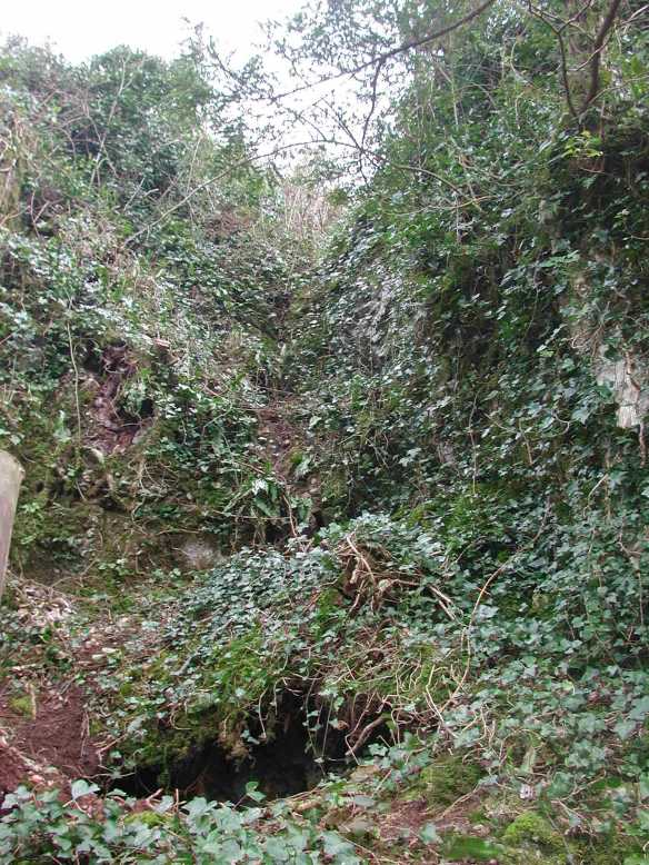 The Gulley Cave in 2005 before excavation.