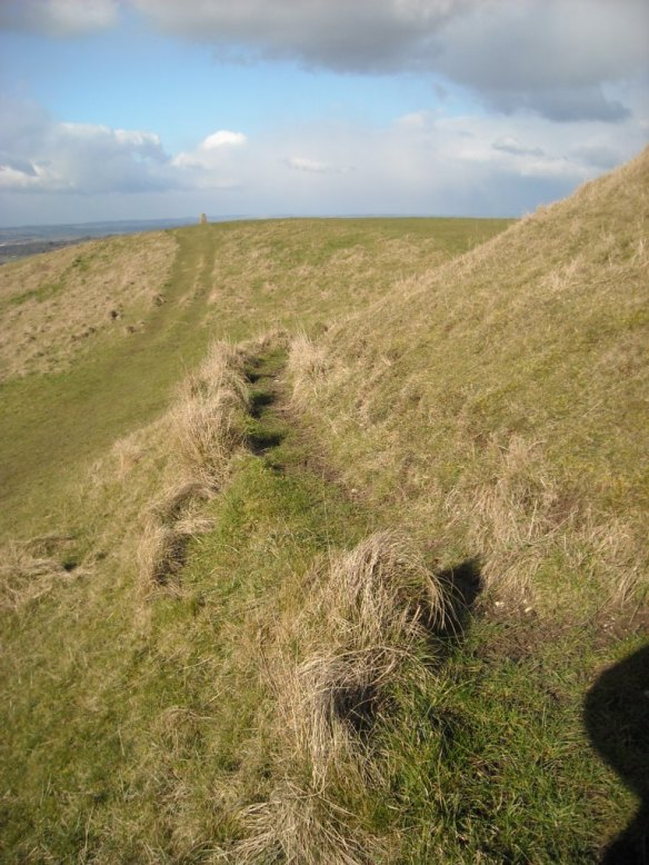 Erosion to the west side of the large bowl barrow