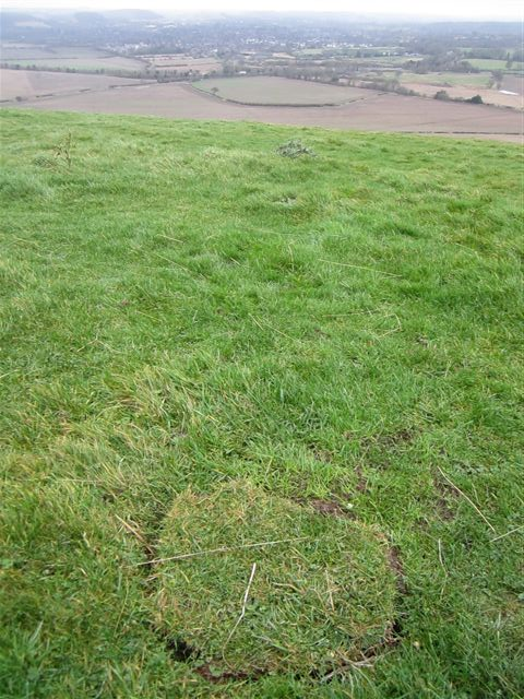 A distinctive cut piece of turf where a metal object has been detected and removed from the ground. What was found ? it is lost from its context now.