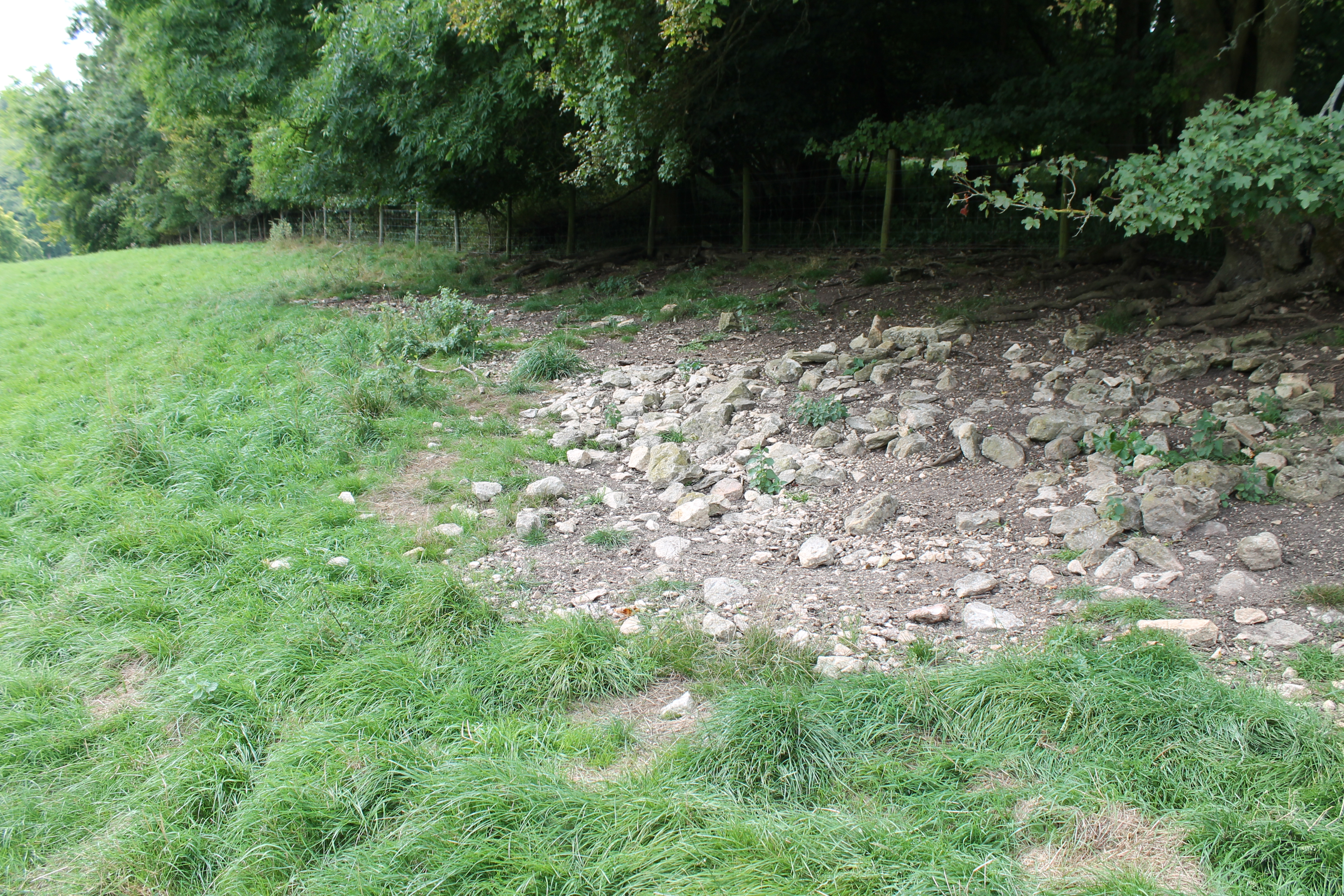 The spread of rubble against the field edge above the valley floor. Here glass, nails, lead, coins and Roman pottery of 2nd-4th century were found.
