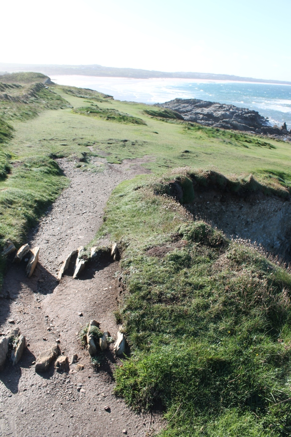 Godrevy, a disused  stone-edged field boundary bank eroded by a footpath and cut away at the cliff edge.