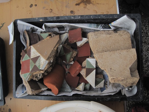 Washed finds from Tyntesfield Conservatory
