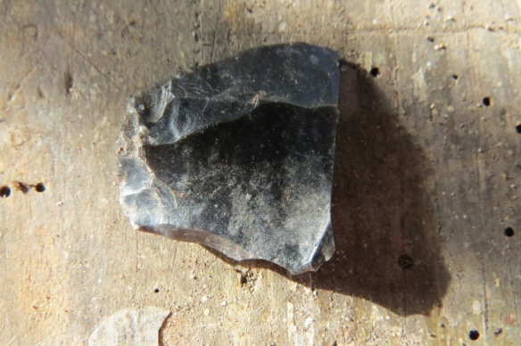 A prehistoric flint/chert tool found in the flowerbed at the Purbeck office