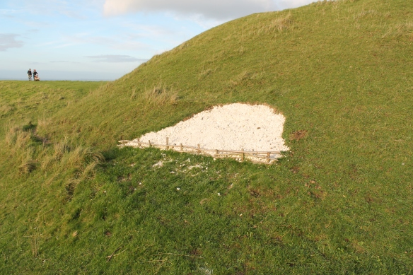 Ben's erosion repair on the side of the Bronze Age burial mound. In the distance more chalk repair material being brought up the hill with tracked motorised wheelbarrow.
