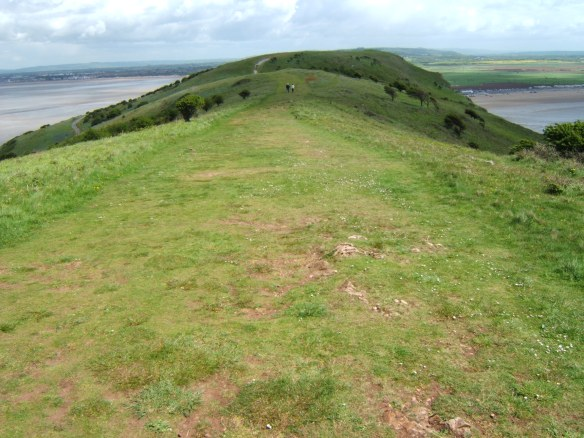 The top of the Down looking east towards the Somerset coast. There are the remains of prehistoric fields and Bronze Age burial mounds here as well as an Iron Age hillfort and Romano-Celtic temple.
