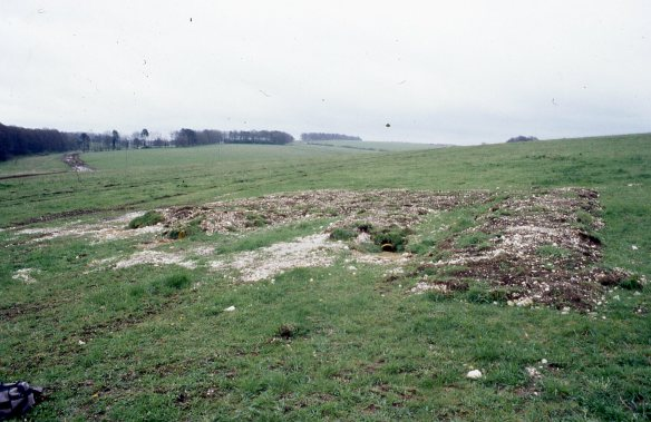 The new badger sett created on MoD land a few hundred metres from the White Barrow