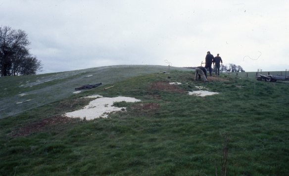 Simon and Mike laying the chain-link fencing across the long barrow mound apart from the badger sett area.