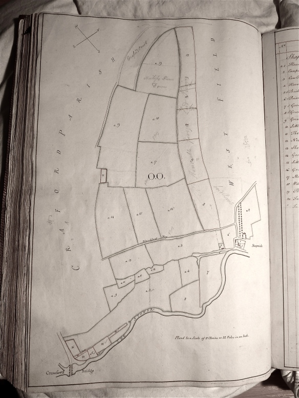 William Woodward's map of Bishop's Court Farm 1774. The field boundaries are much the same today.