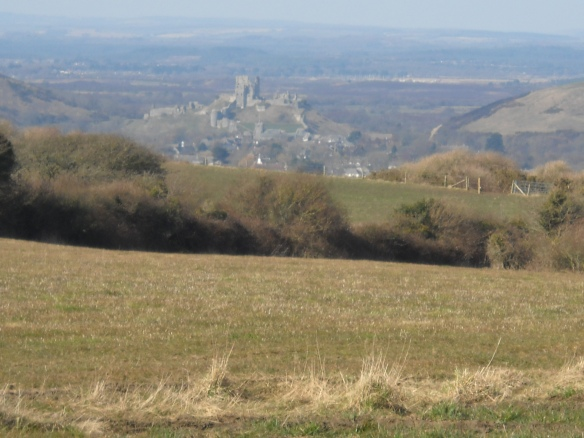 Corfe Castle from the village of Kingston to the south. A view from Kingston on Purbeck's limestone plateau.