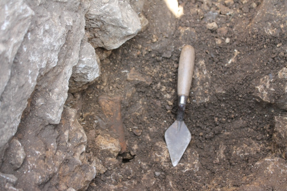 One of the lumps of animal bone mixed in the limestone debris on the east side of the 17th century wall.
