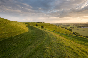 A very special hillfort, Hambledon Hill is rich in human history.  Credit: Ross Hoddinott