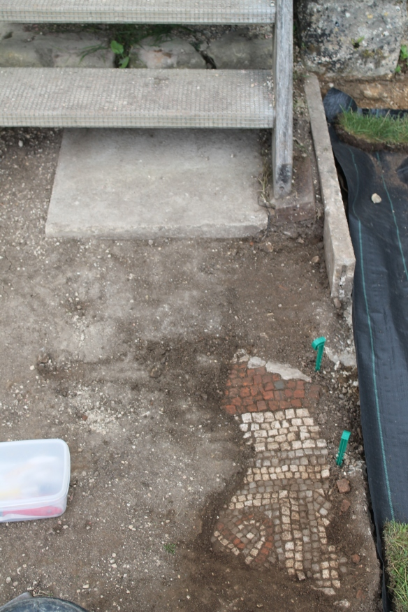 Here is where we have got to so far, a red and white broad border with a finer blue frame around a woven style guilloche (I think that's the right spelling) mat. We found something like it in the West Range corridor in 2012.