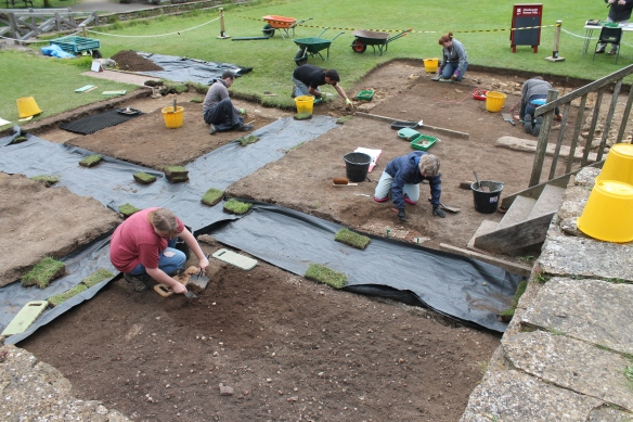 We've put green plastic where the Roman walls were meant to be to protect the surfaces while we work on the islands of Roman archaeology between. So far we have found areas of mosaic in four of the five islands. In the foreground (island c) Alice has almost taken off the last of the topsoil to reveal a landscape of mosaic fragments.  At the foot of the wooden steps (d) Carol has begun to clean back a much better preserved area,