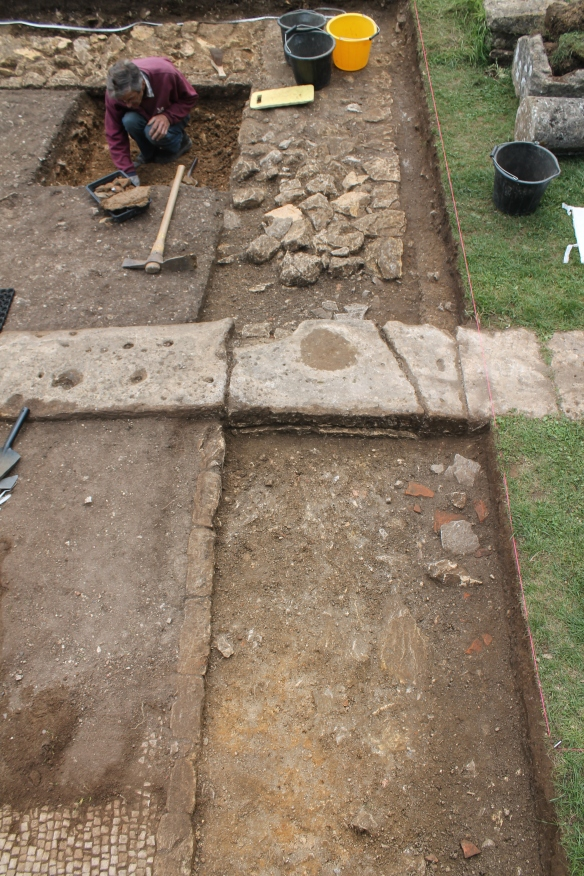 This is Rob's trench against the water feature's south east corner. A view from the steps towards the villa courtyard. He is finding some large lumps of pink plaster which may once have lined the pool. We don't know how deep it is and what the floor is made of. In the foreground is my trench to understand one of Richmond's walls. Beneath the concrete was a line of stones. Jan cleaned the mosaic here. The stones were a kerb for the mosaic edge and had been built over 4th century backfill which covered the earlier wall. The kerb/curb may indicate a doorway into the reception room from the west between the steps and the colonnade marked out in stone slabs middle distance.
