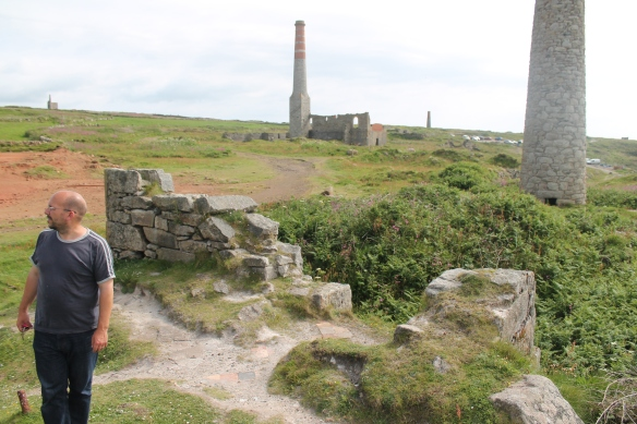 An array of engine house chimneys. Taking steam engine exhaust from machines with various purposes. To drain or ventilate the mine, to bring ore to the surface or transport miners to and from the mine shafts, to crush the ore into powder or to heat the furnaces to remove the arsenic from the powdered ore.