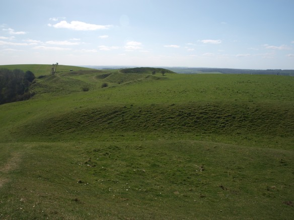 The view south from the southern rampart across the hillfort interior. Middle top left is the SE entrance. It is thought that it was here that a charge by Cromwell's cavalry was driven back by musket fire from the Dorset Clubmen who had occupied the hillfort in 1645. Top left is the central dome of the hill which is the site of the causewayed enclosure dated c.3600 BC.