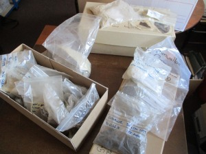 Box of finds fro cross Cornwall, found by the public, Rangers and property staff