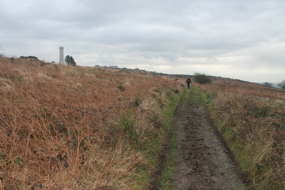 Hardy Monument and the new acquisition looking east
