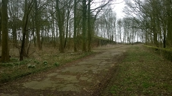 A WWII access track leading to a building in the trees.