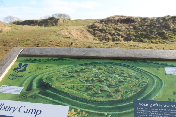 The new information panel at the north gate showing the Iron Age round houses that    people would have lived in over 2000 years ago...although we didn't see and ring ditches on our survey.