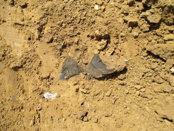 Possible Bronze Age pottery found today