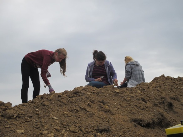 Students Searching the spoil heap