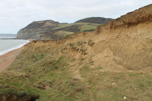 Golden Cap in the distance and the cliff at Seatown in the foreground