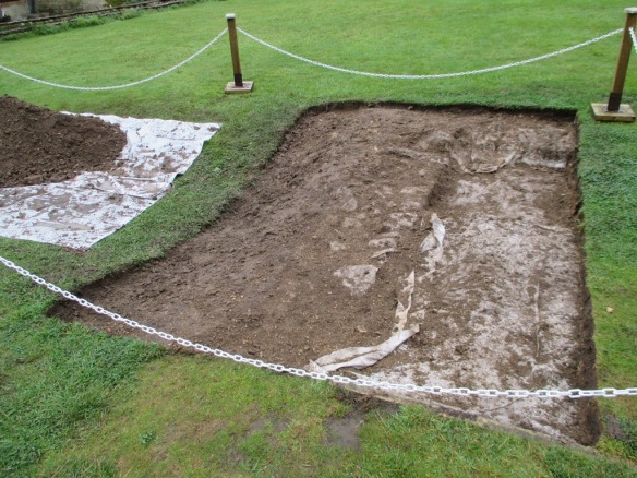 The open third trench, the white area is the geo-textile we put down last year.